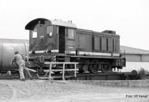 V36 008 Hoya 3